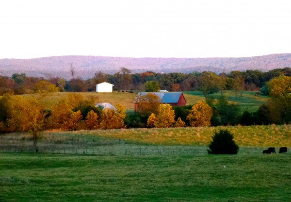 Hunt country in Virginia