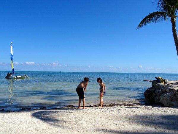 Cheeca Lodge beach