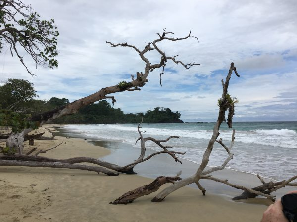 On the beach in Panama, Red Frog Beach