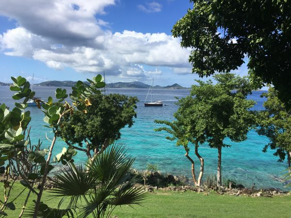 Caneel Bay's Turtle Point